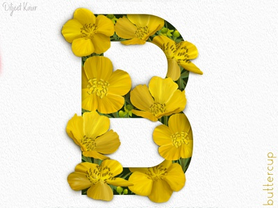 The letter series: B typography lettering letter illustration digital painting design design art alphabet