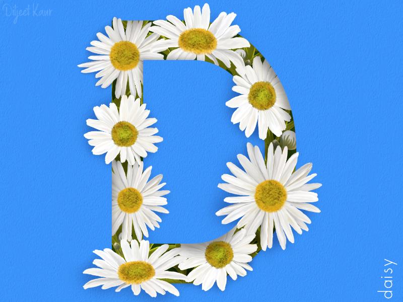The letter series: D art digital painting typography alphabet lettering letter design