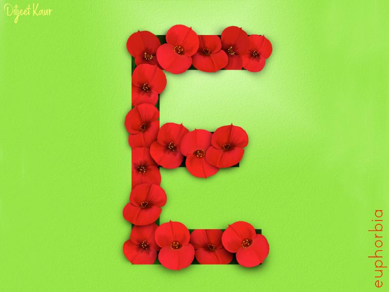 The Letter Series: E alphabet typography lettering letter digital painting art design