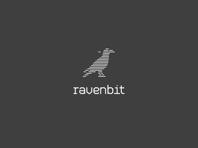 RavenBit logotype typography smart kosovo coders coding bits logo bit animal raven