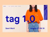 ADER Website Concept
