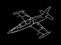 L39 Fighter Jet