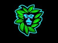 Leaf Monk
