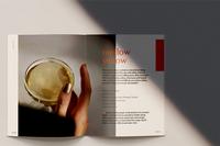 Liquor Lacquer: A cheeky cocktail book