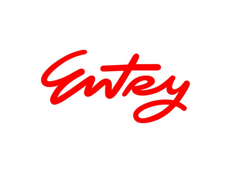 Entry 02 brush lettering brush typeface type logos lettermark wordmark letters lettering identity typography branding logotype logo