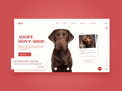 Pet Adoption Website dribbble pet care site doggy dogs web design design uiux conceptual ui adobexd user interface design interactive web website design pet adoption pets adobe xd ui design website concept