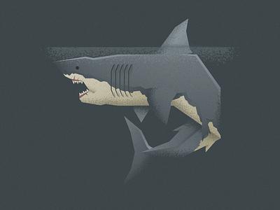 Jaws at Night jaws shark flat minimal illustrator cc illustrator vector illustration design character