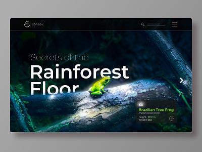 Rainforest Landing Page gradient fullwidth typography app website ui  ux web design concept branding