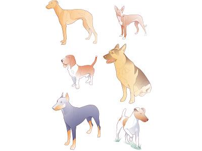 dog breeds breed dog nature illustration