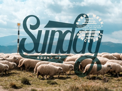 Sunday Round Up cattle sky blue hand type lettering handlettering sheep farm branding badge design typography