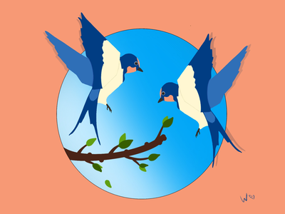 Swallows procreate swallows pic drawing art