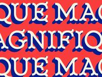 Magnifique 05