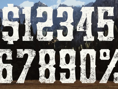 Yuma font typeface numerals numbers design percent dollar product peek preview western rough