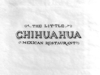 The Little Chihuahua Logo Concepts design lettering typography logo branding mexican restaurant icon sketch paper pen pencil process chihuahua