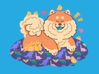 Fluffy Company