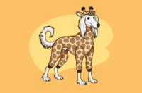 Saluki Dressed As A Giraffe