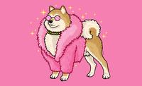Fabulous Shiba cute childrens illustration vector art animal art digital vector illustration shiba inu dog