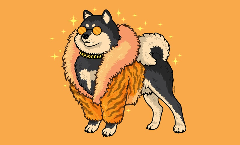 Super Fabulous Shiba fashion childrens illustration vector art animal art digital vector illustration puppy dog cute shiba inu