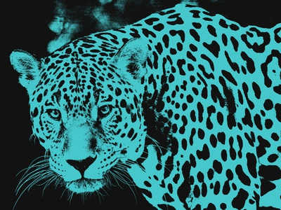 Jaguar Photo Art