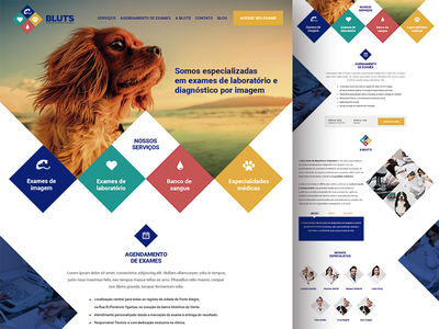 Blut's Centro de Diagnóstico wordpress website visual design ui site responsive pet onepage design
