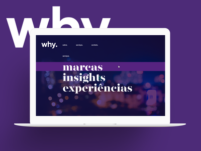 Why Branding website site interface visual design ui design