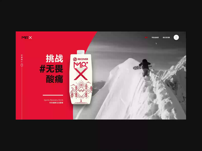 Mr.X Website In Action