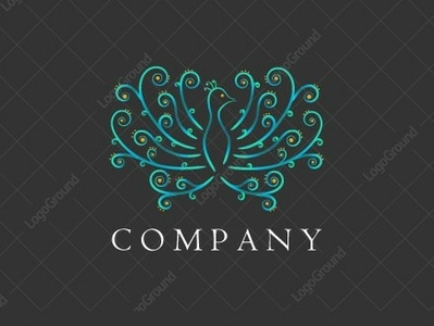 Peacock logo for sale bird illustration bird logo logo design logo 2d logo beauty crown teal gold beautiful swirly swirls swirl elegant animal bird peacock