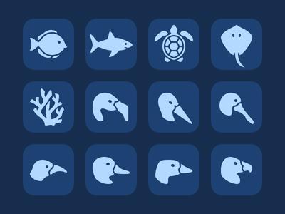 Marine Life & Birds