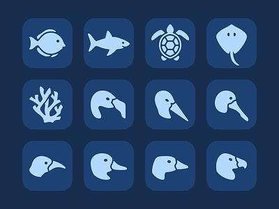 Marine Life & Birds birds magic passport walt disney world animals icon animal kingdom