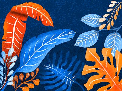 Midnight Garden texture complementary colours plants graphic design ipad procreate illustrator illustration