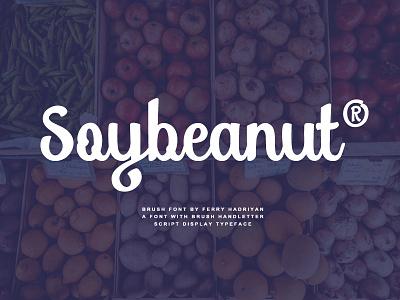 Soybeanut - Brush Script Font swashes fey design script font script lettering typography brush font brush fonts font soybeanut