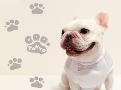 Logo design for Brand New Dog Clothes company in Tokyo logo