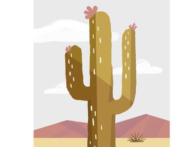 Friday Cactus