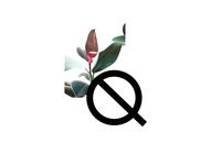 Q Letter of Blazer Font