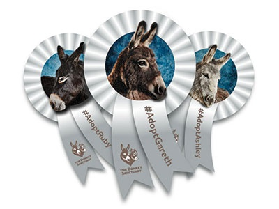 Donkey Sanctuary Ribbons Social Badge