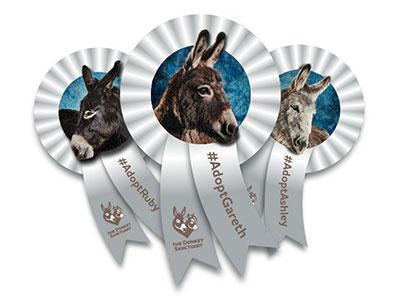 Donkey Sanctuary Ribbons Social Badge rosette the donkey sanctuary social sharing sanctuary donkey ribbons