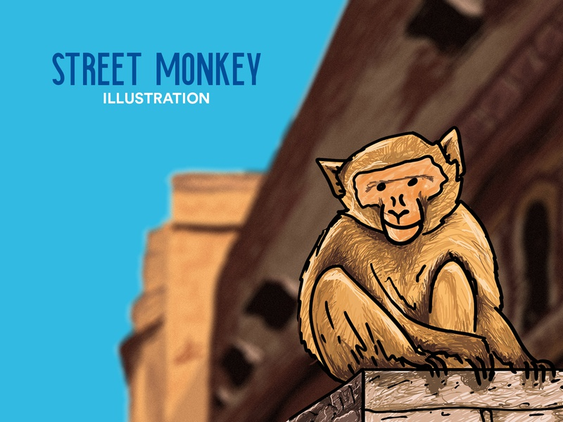 Street Monkey Illustration