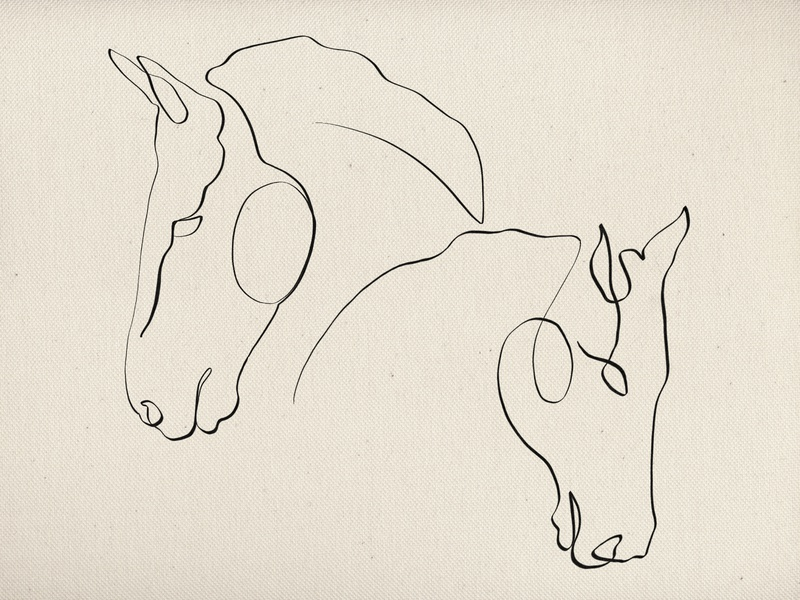 One-line horses illustration design art procreate graphic  design equine oneline illustration brand identity branding