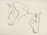 One-line horses illustration