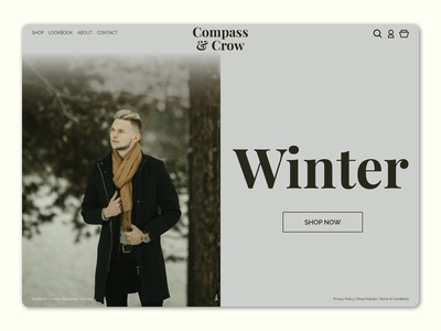 Winter - Website Concept