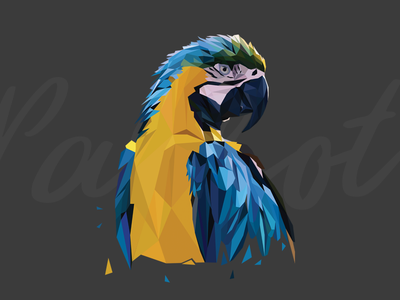 Lowpoly Parrot parrot illustration lowpoly