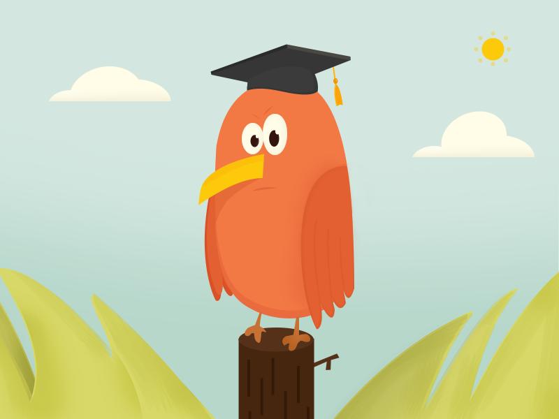 Bird bird graduate flat illustration landscape fly angry sad