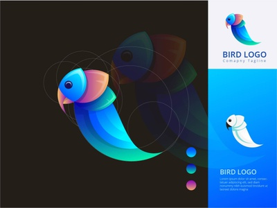 Bird gradient modern logo gradient logo parrot logo parrot brand identity abstract modern logo animal logo bird logo graphic design artwork design design art drowning vector art illustration branding ui logo illustrator