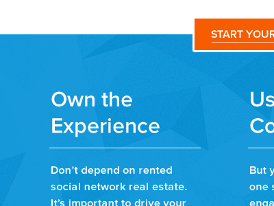 Own the Experience blue orange header button proxima nova