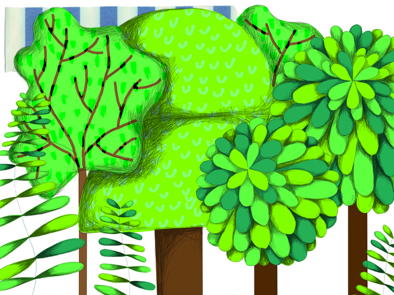 "The forest in ""Kler"" collage digital illustration children book illustration childrens illustration childrens book illustration"