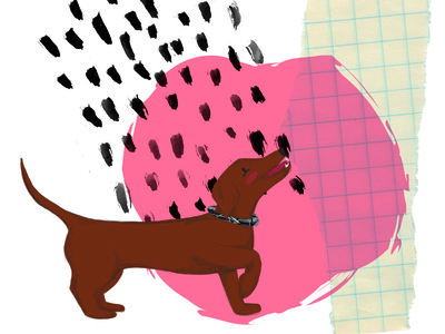 Charlie dog dachshund illustration digital illustration collage childrens illustration childrens book children book illustration