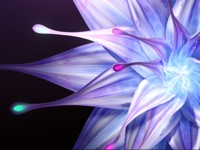 Flower CGI