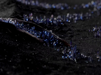 Crystal nucleation black fx sfx seed born brand branding luxury diamond nature illustration nature art 3d motion animation c4d illustration crystals nature crystal nucleation