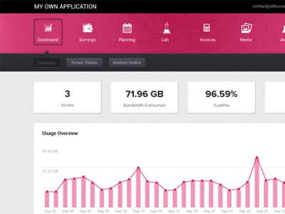 Web Application pink web application analytics