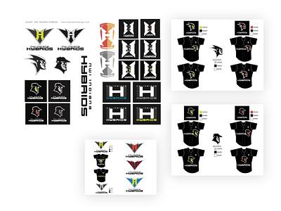 #TBT NWI Hybrid Pro Softball Team Logo Design identity logo design brand design logo art direction design